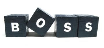 boss-blocks
